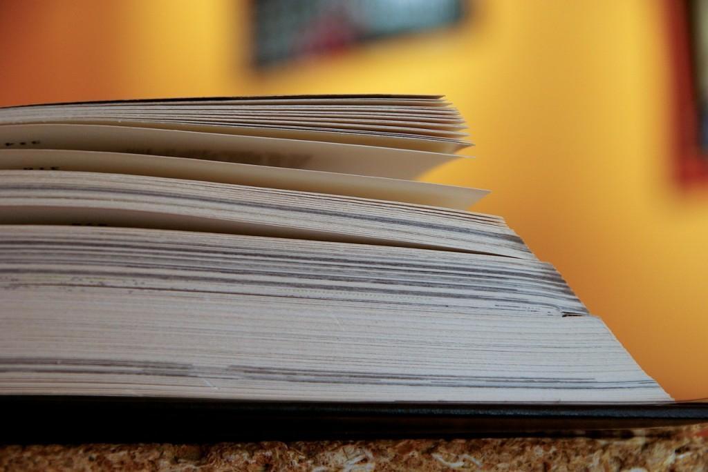 Sagi rodzinne - dlaczego tak chętnie je czytamy?