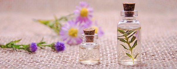 Dolce Gabbana - idealne perfumy na prezent
